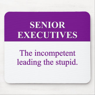Mentoring Role of Senior Executives (2) Mouse Pad