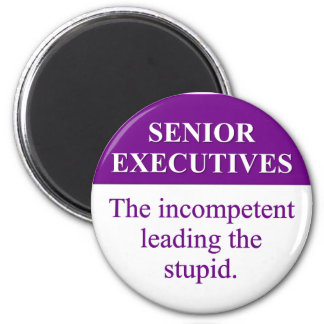 Mentoring Role of Senior Executives (3) 2 Inch Round Magnet