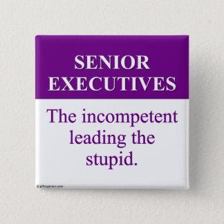 Mentoring Role of Senior Executives (3) Pinback Button