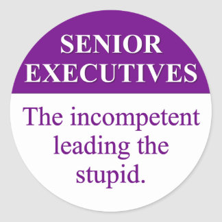 Mentoring Role of Senior Executives (3) Round Stickers