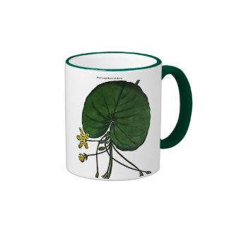 Menyanthes Indica Coffee Mugs