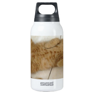 Meow Moments Insulated Water Bottle