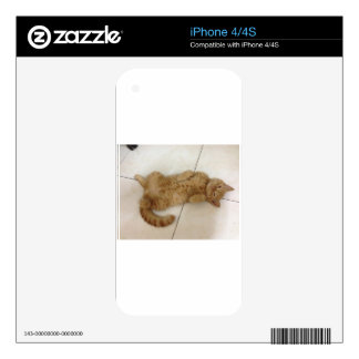 Meow Moments Skins For iPhone 4S