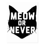 Meow or Never Postcard