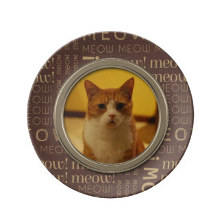 Meow Pattern Brown Add Your Own Cat Photo Dinner Plate