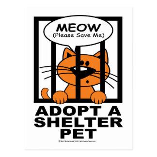 Meow (Save Me) Post Card