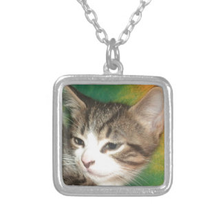Meow Silver Plated Necklace