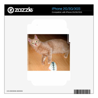 MEOW SKIN FOR iPhone 3