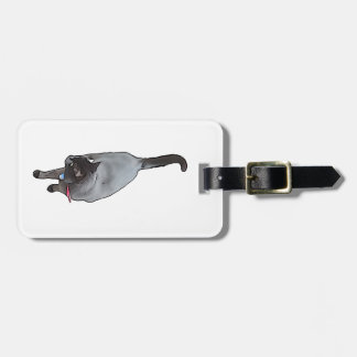 Meow - The Adventures Of jetty Cat Bag Tag