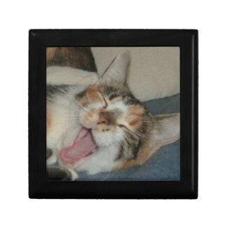 Meow Yawn Jewelry Box