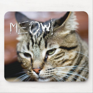 Meow! Your Own Cat Custom Photo Gift Mouse Pad