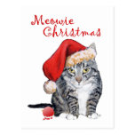 Meowie Christmas Tabby Cat Postcards