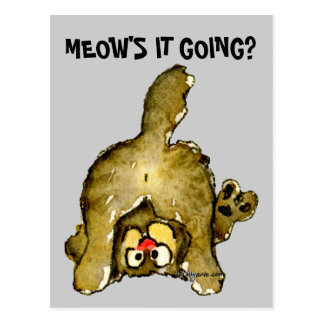 Meow's it Going Cartoon Cat Postcard