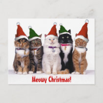 """Meowy Christmas!"" Cats Holiday Postcard"