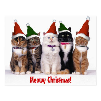 """Meowy Christmas!"" Cats Postcard"