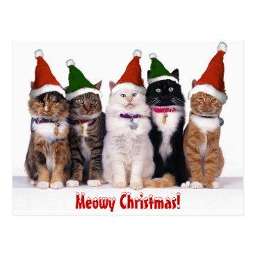 """Christmas Themed """"Meowy Christmas!"""" Cats Postcard"""