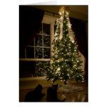Meowy Christmas Greeting Cards