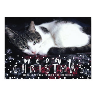 Meowy Christmas Snow Frame Cat Holiday Photo 5x7 Paper Invitation Card