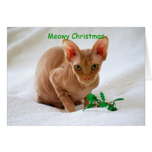 Meowy Christmas Sphinx Cat