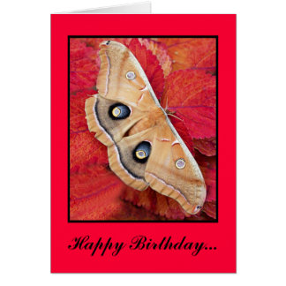 MePrintPolyPhemusa, Happy Birthday... - Customized Card