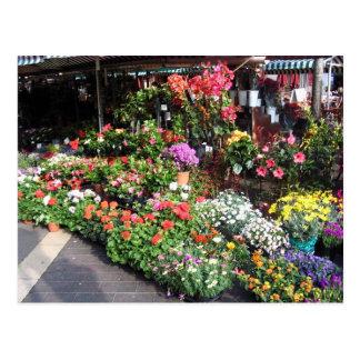 Mercado de la flor en Niza en Francia Postal