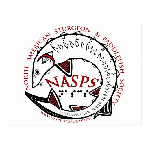 mercancía del logotipo de NASPS.org Tarjeta Postal