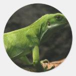 mercancía del reptil pegatina redonda