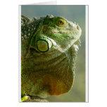mercancía del reptil tarjeta