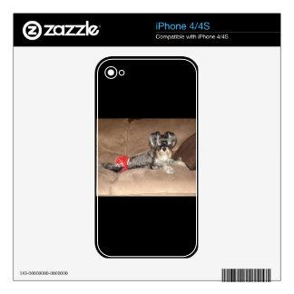 Mercancía del Schnauzer Calcomanías Para El iPhone 4S