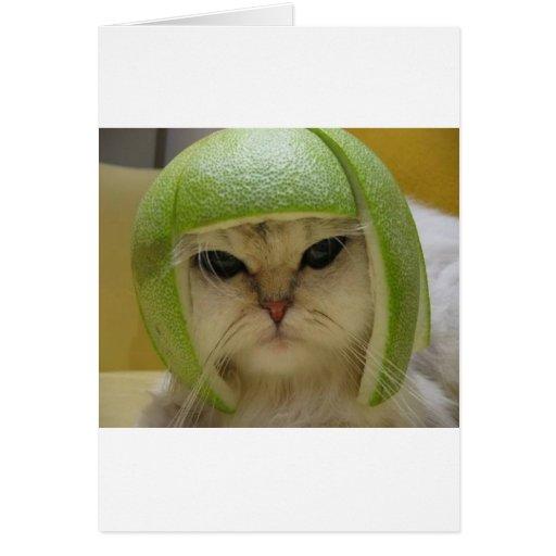 Mercancía divertida del gato tarjeta de felicitación