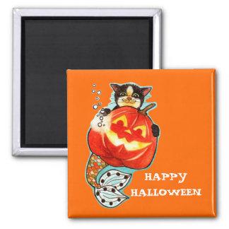 Mercat with pumpkin fridge magnets