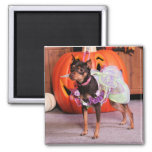 Mercedes - Min Pin - Wilson 2 Inch Square Magnet