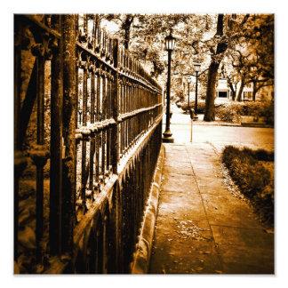 Mercer Fence Art Photo