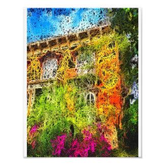 Mercer House Art Photo