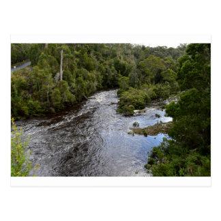 MERCHICENT RIVER TARKINE NATIONAL PARK TASMANIA POSTCARD