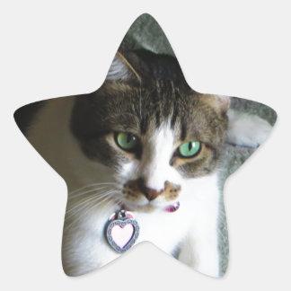 Mercutio, the Contemplative Cat Star Sticker