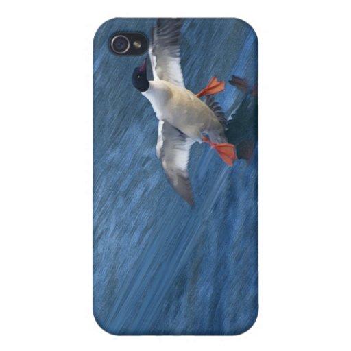Merganser Duck iPhone Case iPhone 4/4S Covers