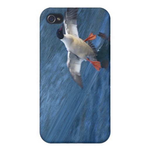 Merganser Duck iPhone Case iPhone 4/4S Cases