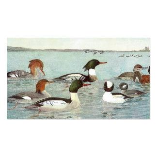 Merganser & Ruddy Duck Design Business Card