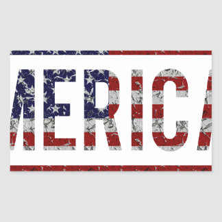 MERICA - American Pride Slang USA Flag Rectangle Stickers