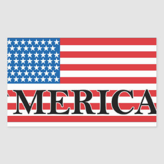 MERICA US Flag Vintage Distressed T-shirt j png Rectangle Stickers