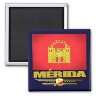 Merida 2 Inch Square Magnet