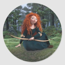 Merida 5 classic round sticker