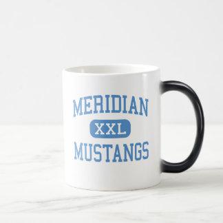 Meridian - Mustangs - High - Sanford Michigan Magic Mug