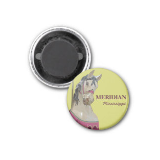 Meridian Round Magnet