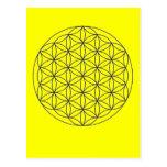merkaba flower of live post cards