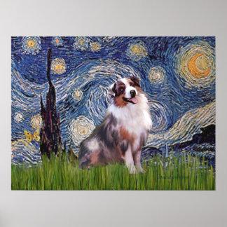 Merle  Aussie Shep  - Starry Night Poster
