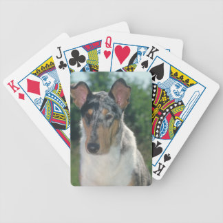 Merle Smooth Collie Dog Playing Cards