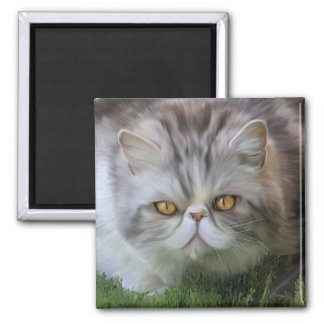 Merlin 2 2 inch square magnet