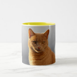 Merlin and the orb Two-Tone coffee mug
